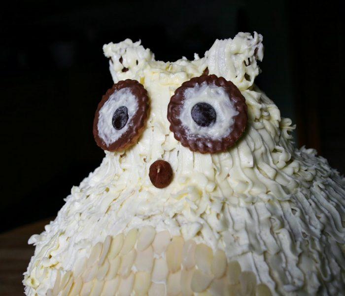 Schnee-Eulen Torte